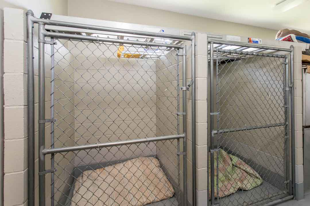 Kennel area at Jefferson Veterinary Hospital