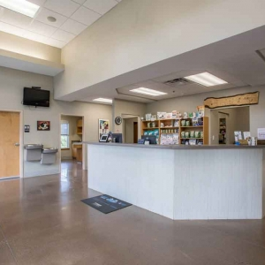 Reception area at Jefferson Veterinary Hospital